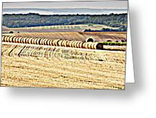 Textured Fields Of France Greeting Card