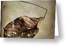 Textured Leaf Greeting Card
