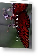 Thank You Card - Butterfly Greeting Card