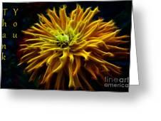 thank you Zinnia Flower Greeting Card