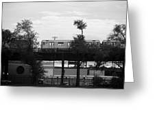 The 7 Line In Black And White Greeting Card