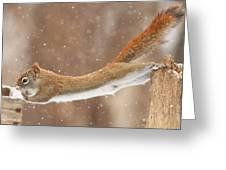 The Acrobat Greeting Card