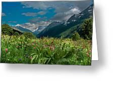 The Alpine Meadows Greeting Card