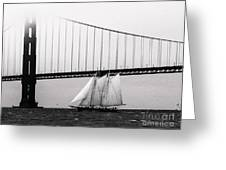 The America And The Golden Gate Greeting Card by Patty Descalzi