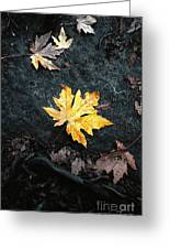The Autumn Leaf Greeting Card