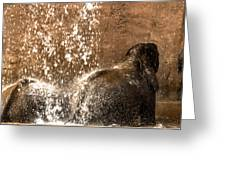 The Bath Day Greeting Card