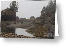 The Bay Of Fundy Greeting Card