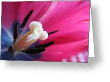 The Beauty From Inside Greeting Card