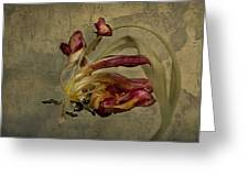 The Beauty Never Dies Greeting Card