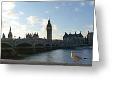 The Big Ben And Dove Greeting Card
