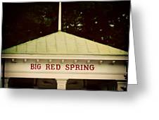 The Big Red Spring Greeting Card by Lisa Russo