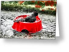 The Birdbath  Greeting Card