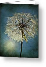 The Blowing Sun Greeting Card