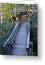 The Bridge Path Greeting Card