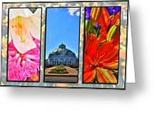 The Buffalo And Erie County Botanical Gardens Triptych Series Greeting Card