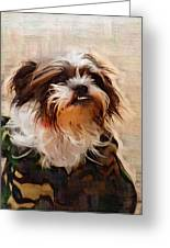 The Camo Makes The Dog Greeting Card
