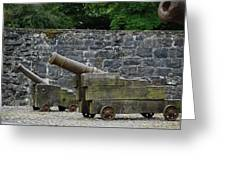 The Cannons Of Bunratty Castle Greeting Card