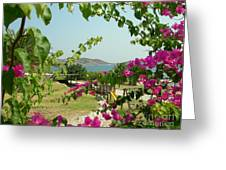 The Colors Of Paros Greeting Card
