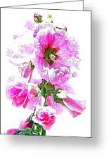10989 The Colour Of Summer Greeting Card