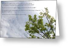 The Crooked Tree Greeting Card