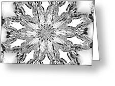 The Crystal Snow Flake Greeting Card