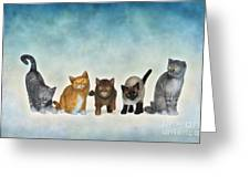 The Cute Ones Greeting Card