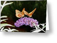 The Dancing Butterflies Greeting Card