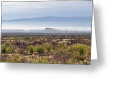 The Desert Mists And Fog Greeting Card