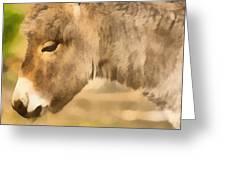 The Donkey Portrait Greeting Card by Odon Czintos