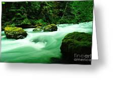 The Dosewallups River  Greeting Card