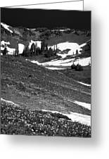 The East Slopes Of Mount Rainier II Greeting Card