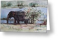 The Elelphant Greeting Card