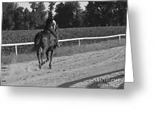 The Equestrian Trainer Greeting Card