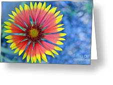 The Extrovert Greeting Card