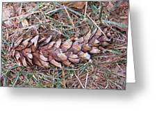 The Fallen Pine Greeting Card