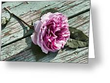 The Fallen Rose Greeting Card