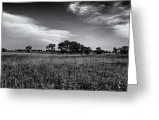 The First Homestead In Black And White Greeting Card