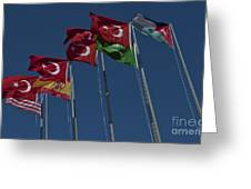 The Flags Of The Participating Nations Greeting Card
