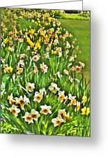 The Flower Bed Greeting Card