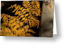 The Golden Fern Greeting Card