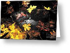 The Golden Leaves Greeting Card