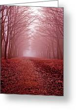 The Golden Path Greeting Card by Aidan Minter