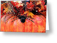The Harvest Spider Greeting Card