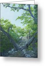The Hiking Trail Greeting Card