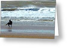 The Horse And The Sea Greeting Card