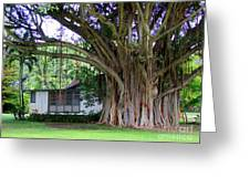 The House Beside The Banyan Tree Greeting Card