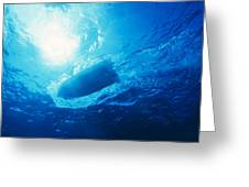 The Hull Of A Speed Boat Dingy Races Greeting Card