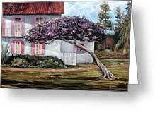 The Kite Tree Greeting Card