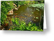 The Koi Are Feeding Greeting Card