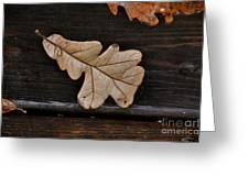 The Leaves Greeting Card